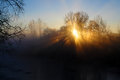 Magic sunrise scenery backlight of trees with sunrays and fog along the river Stock Images