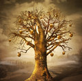 Magic tree with golden apples conceptual digital art Stock Image