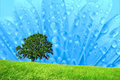Magical nature landscape Royalty Free Stock Photo