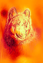 Magical space wolf, multicolor computer graphic collage. Metal and fire effect.