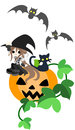 A magician girl with a black cat and are sitting on the big jack o lantern Stock Photos