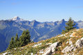 The magnificent swiss alps in an early autumn green alpine meadows adjoin to first easy snow Stock Images