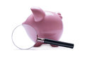 Magnifying glass next to a pink piggy bank porcelain concept of search and financial savings with shadow on white Stock Photography