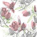 Magnolia blossom. seamless pattern with spring flower.