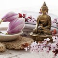 Magnolia and cherry blossoms with buddha for inner beauty seeking purity spirituality at home spa Stock Photo