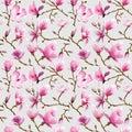 Magnolia Flowers Background Royalty Free Stock Photo