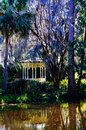 Magnolia gardens and Plantation in Charleston, SC