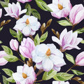 Magnolia pattern Royalty Free Stock Photo