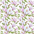 Magnolia pattern Royalty Free Stock Photo