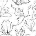 Magnolia sakura flowers branch seamless pattern Royalty Free Stock Photo