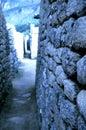 Mahcu Picchu- Peru Royalty Free Stock Photo