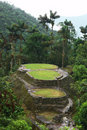 Main Ceremonial Terraces in Ciudad Perdida Stock Image