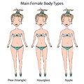 Main Female Body Shape Types. Hourglass, Pear or Triangle and Apple. Realistic Hand Drawn Doodle Style Sketch. Vector