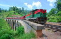 The Main Line Rail Road In Sri Lanka Royalty Free Stock Photo