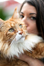 Maine coon cat owner woman kisses her cherished purebred shallow depth of field Stock Photography