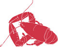 Maine Lobster Royalty Free Stock Photography