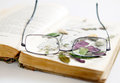 Maintain an overview glasses lying on a book with dried flowers Stock Image