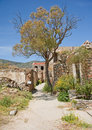 Maisons envahies sur Spinalonga. Photo stock