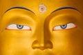 Maitreya Buddha Royalty Free Stock Image