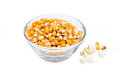 Maize grain dried with popcorn next Royalty Free Stock Photo