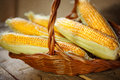 Maize husked photography of ear of in a wicker basket Royalty Free Stock Image