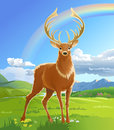 Majestic adult red deer in the meadow Royalty Free Stock Photo