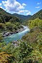 The majestic Buller River Enters the West Coast Buller Gorge. Stock Image