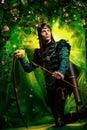 Majestic elf Royalty Free Stock Photo