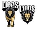Majestic lion mascot