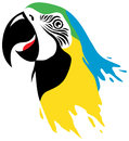 Makaw bird illustration in paint style Stock Photos