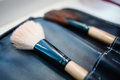 Make-up artist brush set in leather case Royalty Free Stock Photo