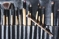 Make up brushes in a leather bag Royalty Free Stock Photography