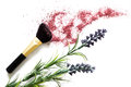 Makeup brush and blusher professional sample with lavander on white background Royalty Free Stock Photo