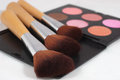 Makeup and brushes multi coloured three on white background shallow dof Royalty Free Stock Photography