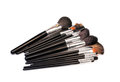 Makeup brushes o a white background Stock Image