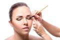 Makeup. Eye shadow brush Royalty Free Stock Photo