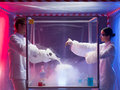 Making chemicals mix in a sterile chamber two scientists men and woman pouring substances into glass container filled with steam Stock Image