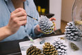 Making decorations for christmas woman painting pine cones at her home Stock Image