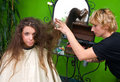 Making hair style Stock Photography