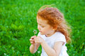 Making a wish adorable year old girl blowing dandelion shallow depth of field focus on foreground Stock Photography