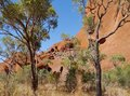 The Mala walk at Ayers rock Stock Photo