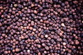 Malabar Peppercorns Royalty Free Stock Photo