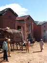 Malagasy highland village Royalty Free Stock Image