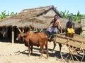 Malagasy natives Stock Image