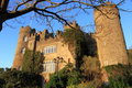 Malahide Castle And Branches Royalty Free Stock Photos