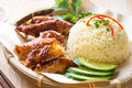 Malaysia grilled chicken rice asian style hainan close up asian food Stock Photography