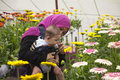 Malaysian mother showing flowers to her baby a having a good time with boy him gerbera daisies in a greenhouse Stock Image