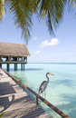 Maldives seascape Royalty Free Stock Photography