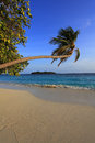 Maldivian island Stock Photography