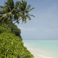 Maldivian island coast Stock Photography